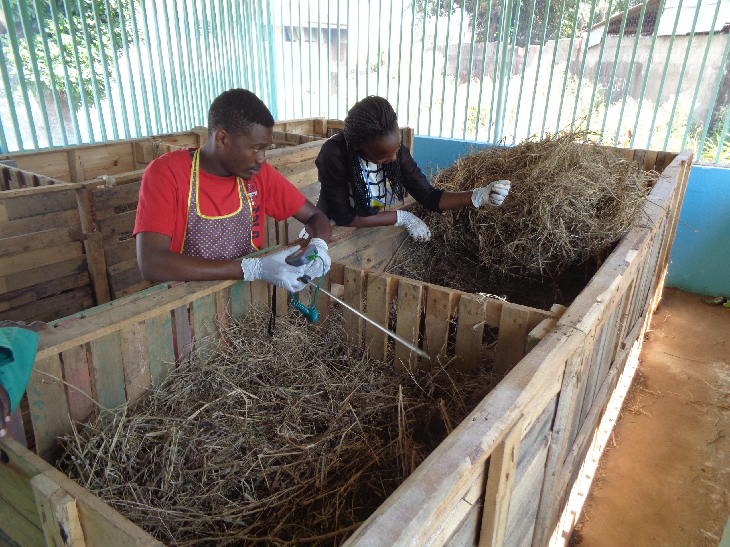 Compostaje Maputo
